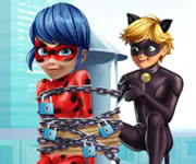 Cat Noir Saving Ladybug